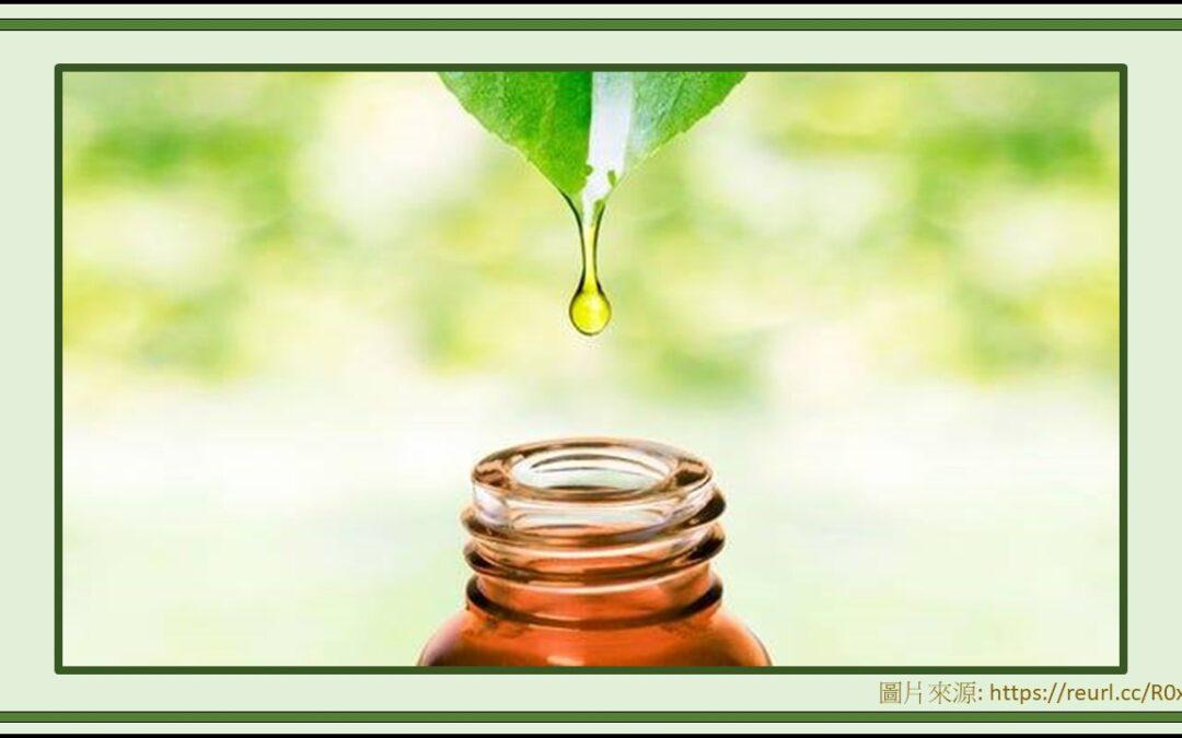 芳療家的法寶 – 精油